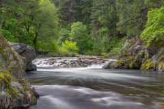 Whispering Flow on the North Yuba